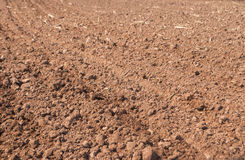 Cultivated gray dried soil, nature background Royalty Free Stock Photography