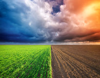 Cultivated green meadow and heavy sky clouds. Rural scene Stock Photos