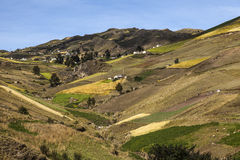 Cultivated hillsides around Zumbahua Royalty Free Stock Image