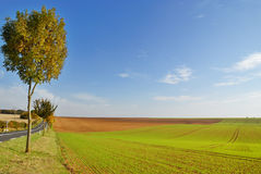 Cultivated land. In early spring stock images