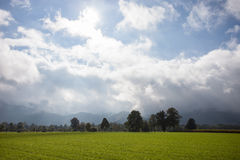 Cultivated land in black forest, germany Stock Photos