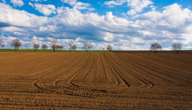 Cultivated land Royalty Free Stock Photography