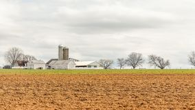 Cultivated land in early spring. Field during the early spring royalty free stock photos