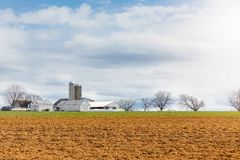 Cultivated land in early spring. Field during the early spring stock image