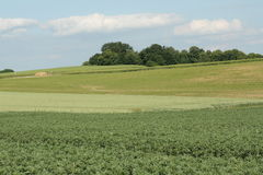 Cultivated land in France. Cultivated land in Aisne, Picardie north of France stock photography
