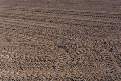 Cultivated Land. Plowed  fertile soil with tractor traces - cultivated land Royalty Free Stock Photo