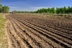 Cultivated land and ridges sets. Arable land sorted out rows of neat ridge Royalty Free Stock Image