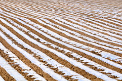 Cultivated land and ridges sets. Arable land sorted out rows of neat ridge Stock Photo