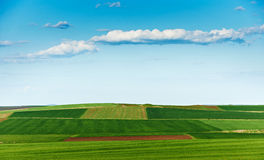 Cultivated land in spring Stock Image