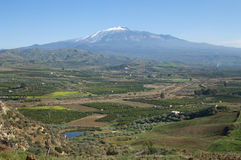 Cultivated Land And The Volcano Etna Royalty Free Stock Images
