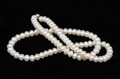 Cultivated pearl necklace. Royalty Free Stock Image