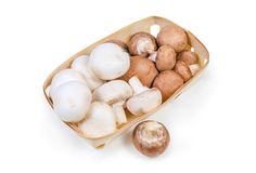 Cultivated raw white and brown mushrooms in the wooden basket. Cultivated raw white and brown button mushrooms in the small wooden basket and one mushroom beside royalty free stock image