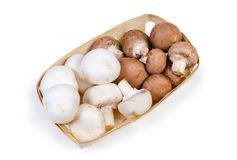 Cultivated raw white and brown mushrooms in the wooden basket. Top view of the cultivated raw white and brown button mushrooms in the small wooden basket on a royalty free stock photos