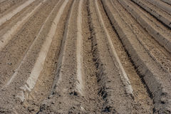 Cultivated soil Royalty Free Stock Image