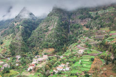 Cultivated terraced fields on the cliff top on the island of Madeira Stock Images