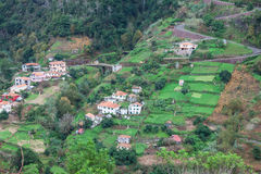 Cultivated terraced fields on the cliff top on the island of Madeira Royalty Free Stock Photo