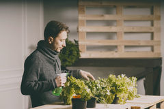 Cultivateur beau vérifiant et prenant soin des usines image stock