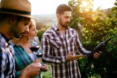 Cultivateurs de vin goûtant le vin dans le vignoble photographie stock