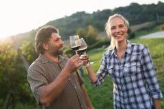 Cultivateurs de vin grillant avec le vin rouge dans le vignoble Image libre de droits