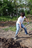 Cultivating garden Stock Image