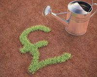 Cultivating Pound Sterling Royalty Free Stock Images