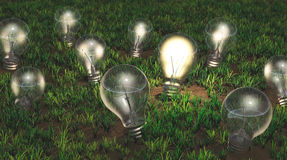 Cultivation of ideas Royalty Free Stock Image