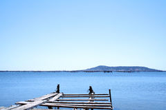 Dilapidated jetty and seascape. Dilapidated jetty and calm blue sea with distant hills on far shore royalty free stock photography
