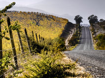 Cultivation and road Stock Photos