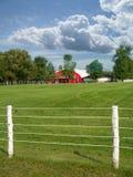 Cultive com grama verde, a cerca branca e os céus azuis Imagem de Stock