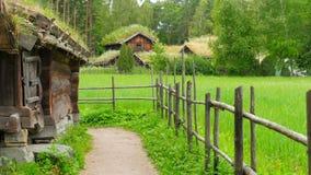 cultive con el tejado norwagian hermoso de la hierba verde de pueblo, Noruega, 4k almacen de metraje de vídeo