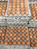 Cultive el huevo en el envase de papel, primer de muchos huevos marrones frescos adentro Imágenes de archivo libres de regalías