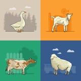 Cultive el paisaje rural con la cabra, las ovejas, la vaca y el ganso Ejemplo del vector de la agricultura Campo colorido libre illustration
