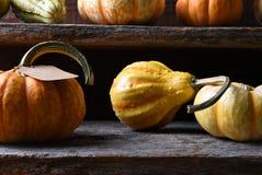 Cultive el soporte con las verduras del otoño incluyendo las calabazas, calabazas y Fotos de archivo libres de regalías