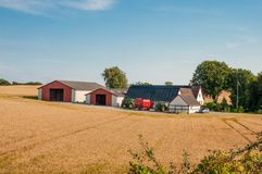 Cultive em Dinamarca imagem de stock