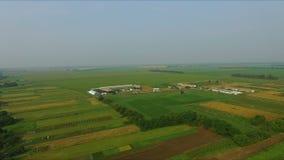 Cultive en el pueblo - fotografía aérea de campos agrícolas almacen de metraje de vídeo