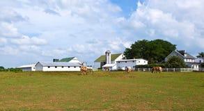 Cultive la casa con el campo y el silo fotos de archivo