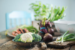 Cultive legumes frescos do mercado local da cozinha suuny Fotos de Stock Royalty Free