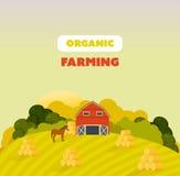Cultive los alrededores, argumentos, campos, agricultura, naturaleza, productos respetuosos del medio ambiente naturales ilustración del vector
