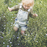 Cultive o conceito sazonal do crescimento da natureza do jardim fotografia de stock royalty free