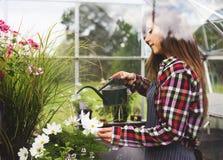 Cultive o conceito sazonal do crescimento da natureza do jardim fotos de stock