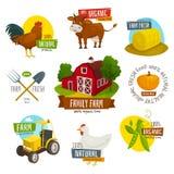 Cultive o grupo de etiquetas, ilustração do vetor dos desenhos animados, cultivando emblemas com as ferramentas da vaca do pintai Fotografia de Stock