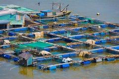 Cultive para la cría de los pescados en el Vietnam meridional Foto de archivo libre de regalías