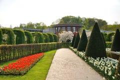 Cultive un huerto con las flores de los arbustos, rojas y blancas Fotos de archivo libres de regalías