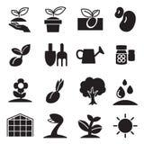 Cultive y la planta crece los iconos fijados Imágenes de archivo libres de regalías