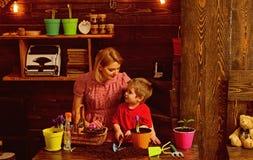 Cultiveer concept De moeder en de zoon cultiveren bloem in pot De moeder en het kind cultiveren ingemaakte bloem Cultiveer de gro royalty-vrije stock foto