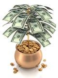 Cultivez l'argent Photos libres de droits