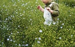 Cultivez le concept saisonnier de croissance de nature de jardin photos libres de droits