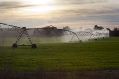 Cultivez le système d'irrigation - la Floride Images libres de droits