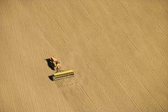 Cultivo agricultural. Fotos de Stock Royalty Free