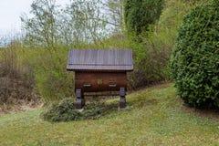 Cultivo colorido del insecto de la caja de la colmena de madera de la casa de la abeja de la colmena Fotos de archivo libres de regalías